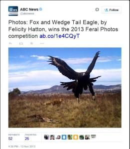 eagleandfox