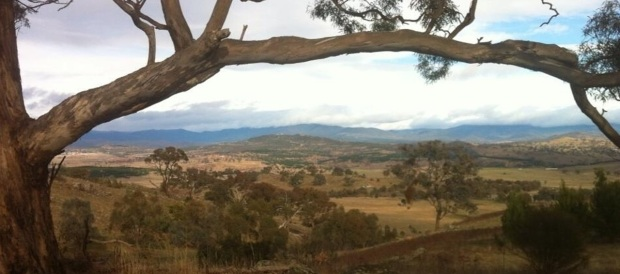Canberra Nature Park today - view from Mt Painter towards Namadgi