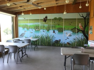 The learning space interpretation is focussed on the wetlands natural values