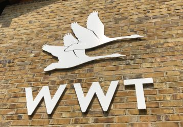 The Wildfowl and Wetlands Trust is a leading UK charity