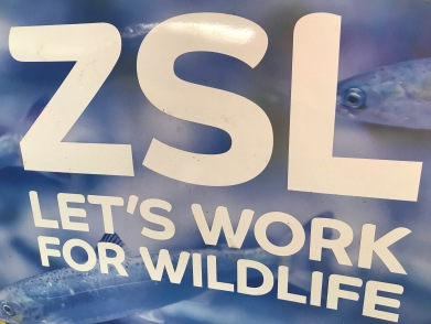 The Zoological Society of London is more than a Zoo