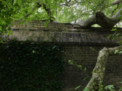 Nature taking back from the very old infrastructure at Cambridge