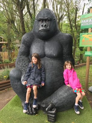 Time for a grab with a Gorilla