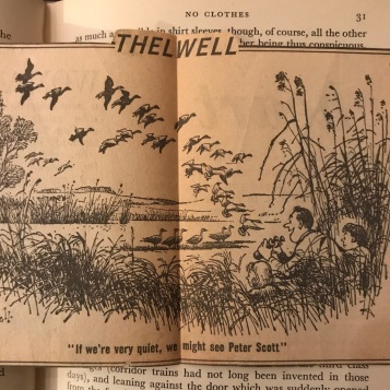 A quaint cartoon I found in my copy of Sir Peter's autobiography - the man had become a myth